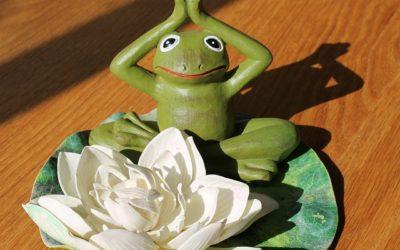 OSHO o Meditaci (1.díl) – Jak meditovat? (ENG)